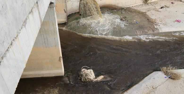 Kirliliği önlenemeyen Nizip çayı zehir saçıyor