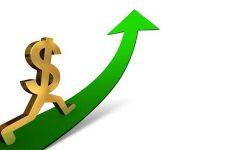 Merkez Bankası faizleri değiştirmedi, karar sonrası dolar yükseldi