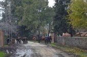 Mahalle Kuduz Nedeniyle 6 Ay Süreyle Karantina Altına Alındı