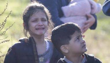 Sığınmacılar Türkiye-Yunanistan arası tampon bölgede kaldı