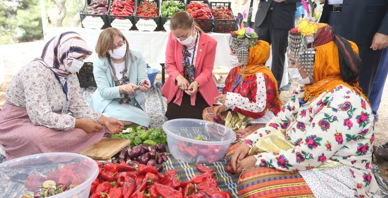GastroAntep, Antep fıstığı hasadı ve şire yapımıyla başladı